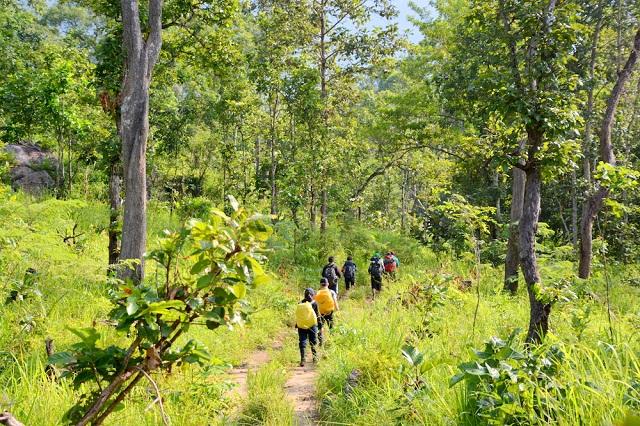 Khi đi du lịch, tham quan khu bảo tồn thiên nhiên nên chú ý không tách đoàn để tránh bị lạc