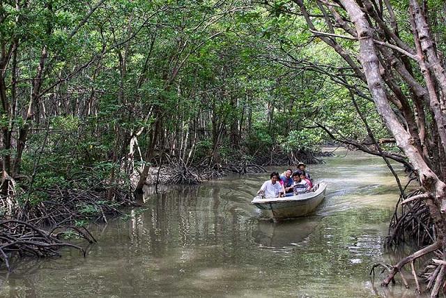 Tại Việt Nam có nhiều khu bảo tồn thiên nhiên hoang dã