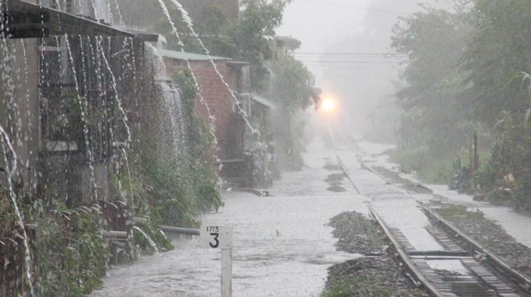 Lựa chọn khoảng thời gian hợp lý khi đi du lịch Đà Lạt, để tránh bị ảnh hưởng của thời tiết