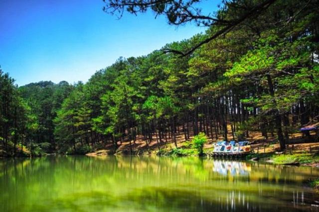 Không gian xanh xung quanh Thung Lũng Vàng