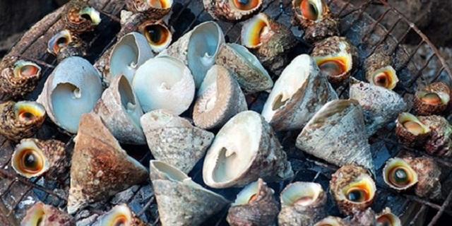 Ốc vú ở Cù Lao Chàm được người dân chế biến thành nhiều món ăn khác nhau