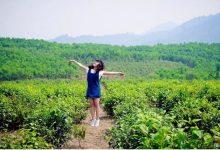 Kinh nghiệm du lịch đồi chè Đông Giang Đà Nẵng