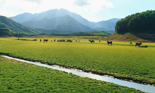 Vẻ đẹp yên bình độc lạ của hồ Hòa Trung Đà Nẵng