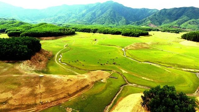 Hồ Hòa Trung với những thảm cỏ xanh chạy dài tít tắp