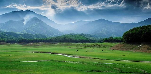 Hồ Hòa Trung Đà Nẵng được ví như thảm thảo nguyên của Đà Nẵng