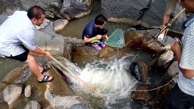 Du khách có thể đánh bắt nhiều loại động vật để làm thức ăn ở suối Voi