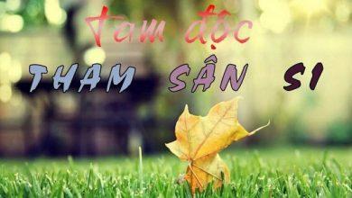 Photo of Tham Sân Si là gì? Tại sao phải chế ngự Tham Sân Si?