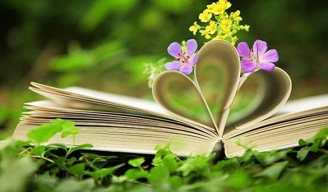 Lá diêu bông là một loại lá không hề có thực, loại lá này chỉ là câu nói đùa của người con gái muốn từ chối tình cảm của người khác
