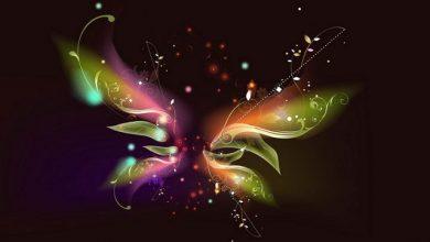 Photo of Hiệu ứng cánh bướm là gì? Nó xuất phát từ đâu?
