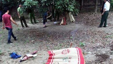 Photo of Mâu thuẫn gia đình, bác sát hại bé trai 7 tuổi rồi mang xác giấu trong vườn nhà