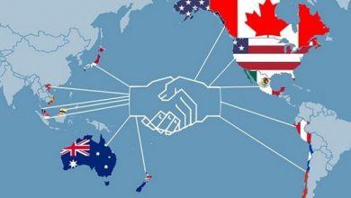 Toàn cầu hóa kinh tế là gì? Hệ quả của việc toàn cầu hóa