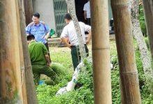 Photo of Phú Thọ: Mâu thuẫn cá nhân, dùng cuốc bổ chết hàng xóm