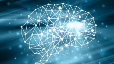 Photo of Neural network là gì? Những ví dụ về Mạng nơ-ron nhân tạo