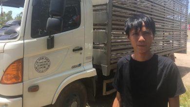 """Photo of Vụ """"Hôi vịt"""" từ xe tải bị lật: """"Có người bắt đến chục con, lái xe chạy theo van xin mà không được"""""""