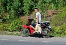 """Photo of Công an khẳng định không có chuyện người dân """"hôi"""" vịt ở Quảng Bình"""