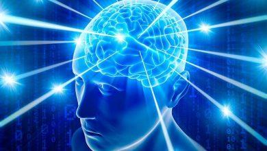 Trí tuệ là gì? Như thế nào được gọi là người có trí tuệ
