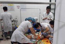 Photo of Nghệ An: Chó becgie xổng chuồng cắn bé gái 22 tháng tuổi tử vong
