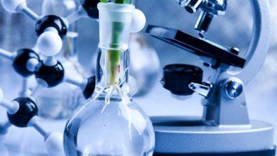 Photo of Công nghệ sinh học là gì? Bao gồm những lĩnh vực nào?