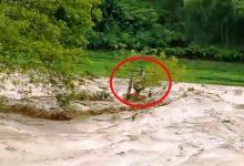 Photo of Nam thanh niên cứu người đàn ông ôm cây giữa dòng nước lũ suốt 10 giờ