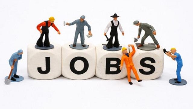Thất nghiệp có thể là do thiếu đi kỹ năm mềm trong từng lĩnh vực đang theo đuổi