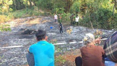 Photo of Phú Thọ: Một người chết cháy do đột quỵ lúc đốt lá trong vườn nhà