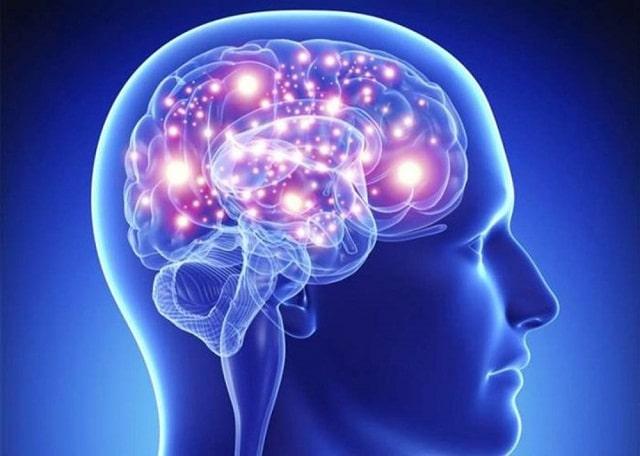 Tri giác và cảm giác có nhiều điểm giống và khác nhau