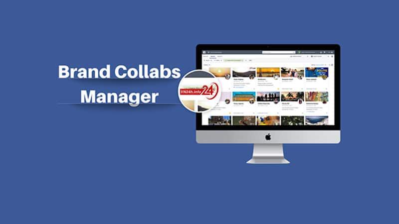 Brand Collabs Manager là gì?