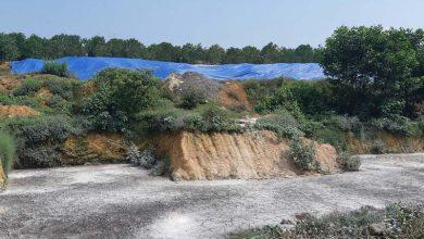 """Photo of Gia cầm Hòa Phát Phú Thọ xả thải ô nhiễm môi trường: Sở TN&MT Phú Thọ """"bất lực""""?"""