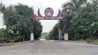 Photo of Việt Trì, Phú Thọ: Chính quyền làm ngơ cho doanh nghiệp chiếm đất?
