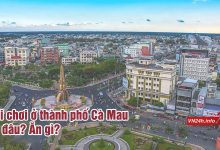 Photo of Địa điểm vui chơi ở thành phố Cà Mau