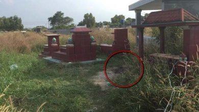 Photo of Xương người bị đốt trong nghĩa trang: Nghi nạn nhân bị giết rồi phi tang
