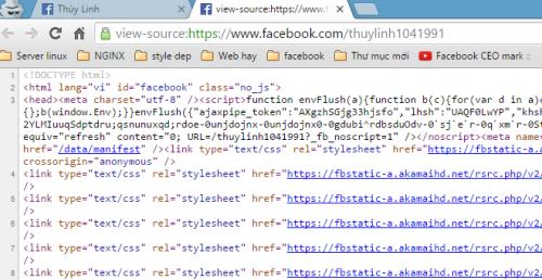 Nhấn tổ hợp phím Ctrl + U trên bàn phím để show source code của Facebook cá nhân