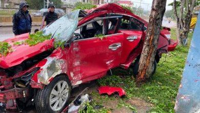 Photo of VIDEO: Ô tô lộn vài vòng rồi đâm vào gốc cây khiến tài xế tử vong