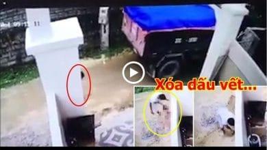Photo of Cán chết cháu bé rồi phi tang xác, tài xế vô nhân tính sẽ chịu mức phạt nào?