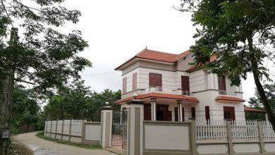 Photo of Thủ phủ sưa đỏ Vĩnh Phúc: Cả làng xây biệt thự, đua nhau sắm ô tô