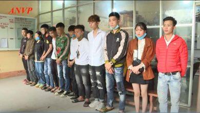 Photo of Công an bắt giữ 14 đối tượng ở Phú Thọ điều khiển xe mô tô ᵭάпн võng, ɓốc đầu